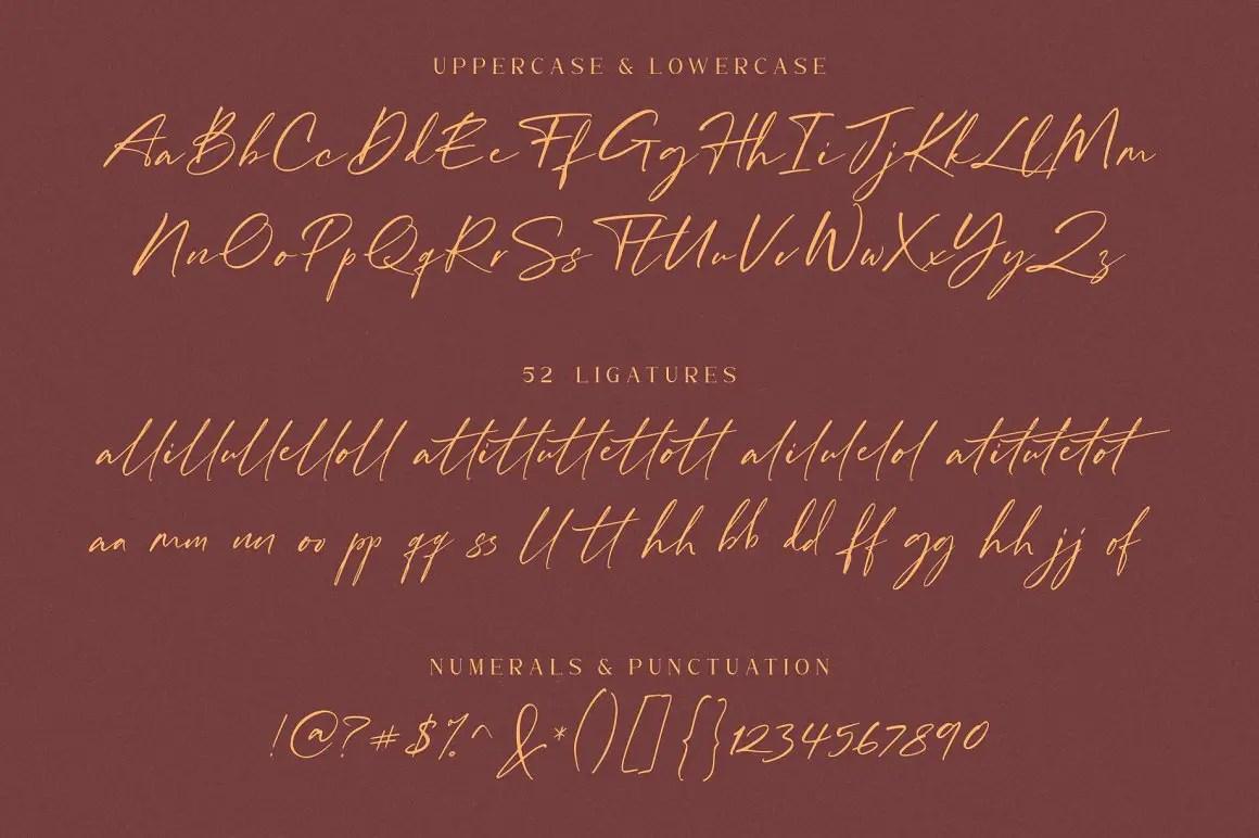 William Costinavel Handwritten Script Font-3