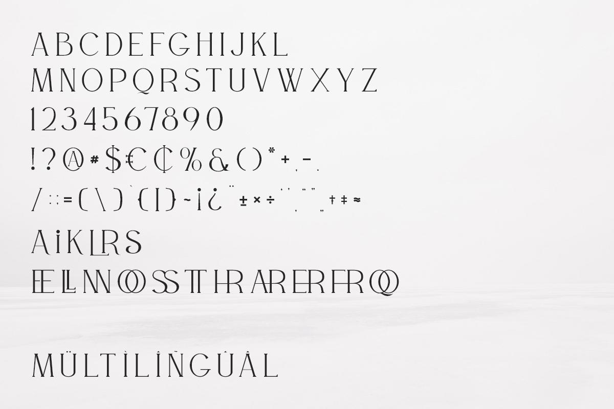 Willson Clean Serif Font-3