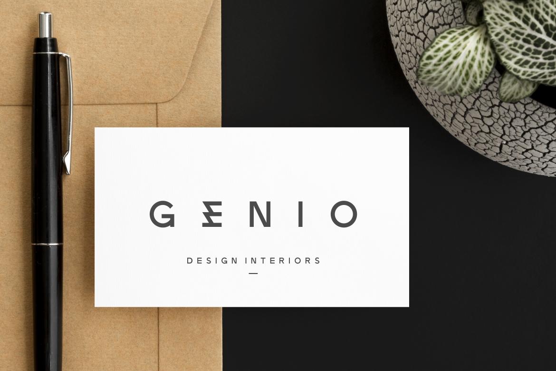 Zeniq Modern Sans Display Font-2