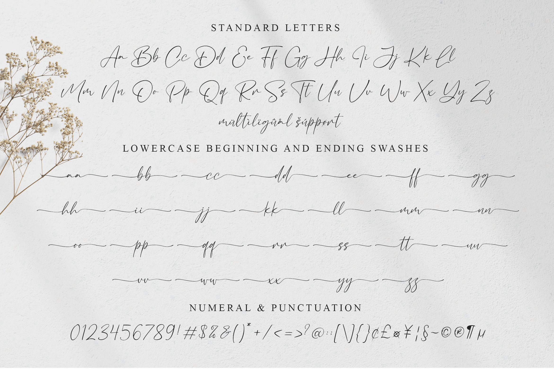 Bacalisties Handwritten Script Font-3