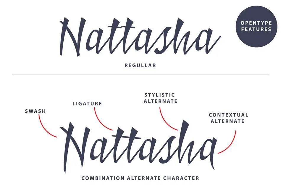 Badhead Script Handwritten Typeface-3