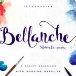 Bellanche Script Calligraphy Font