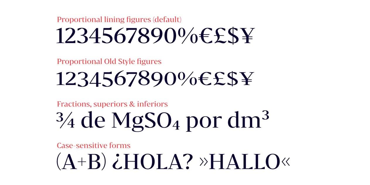 Bw Darius Serif Font Family-3