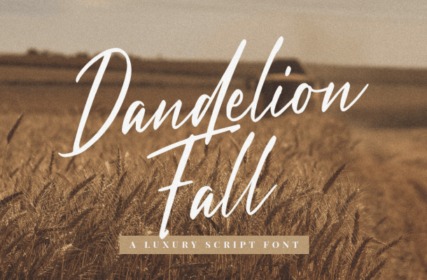 Dandelion Fall Handwritten Script Font
