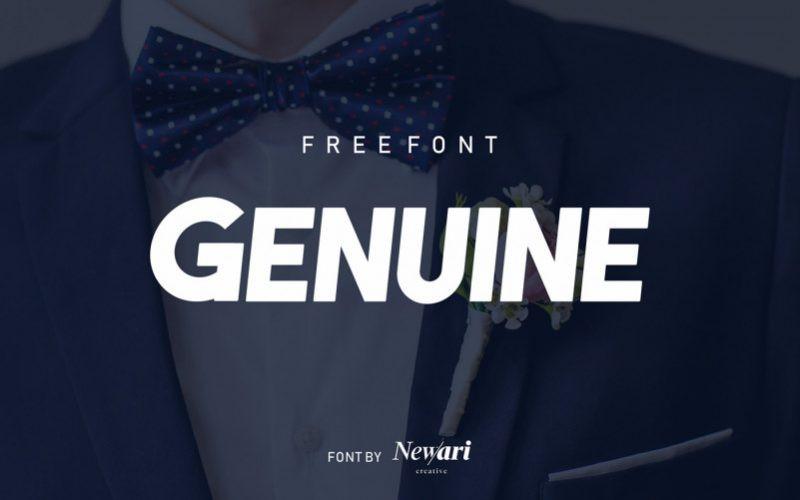 Genuine Sans Serif Font-1