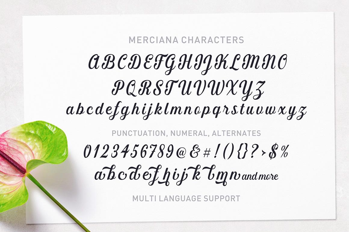 Merciana Script Handwritten Font-3