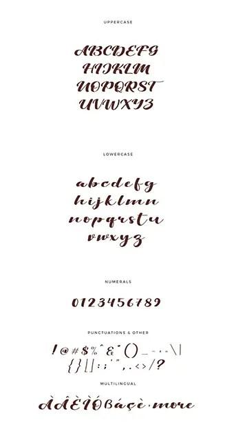 Viksi Script Calligraphy Font-3