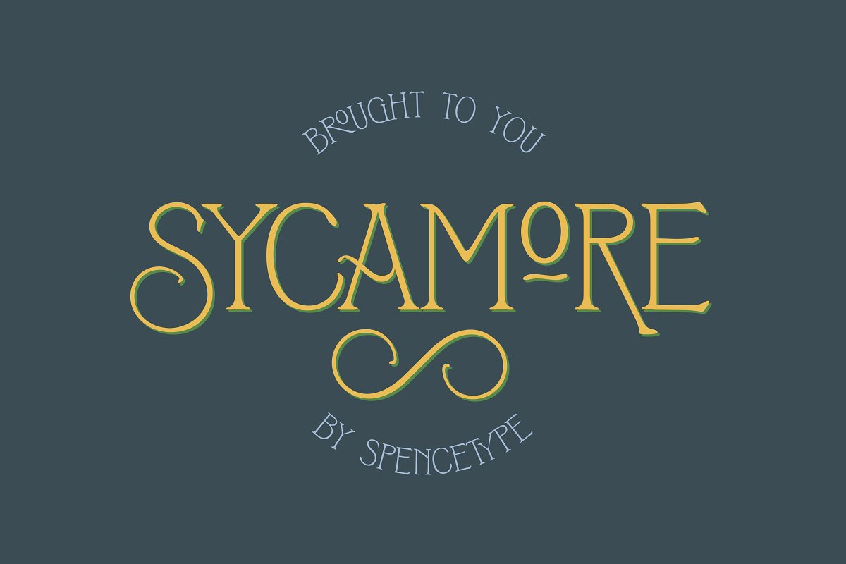 Sycamore Display Font-1