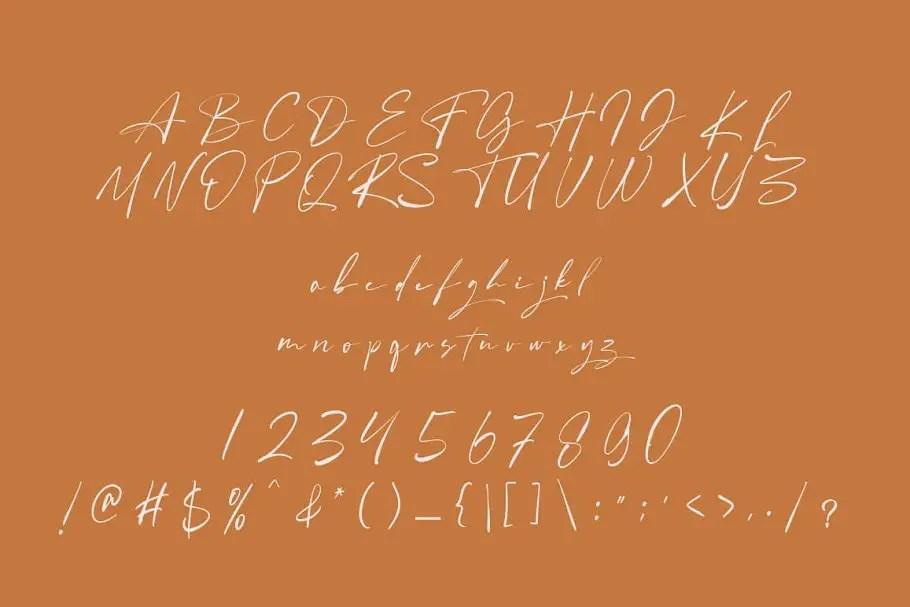 Angelinas Calligraphy Font-3