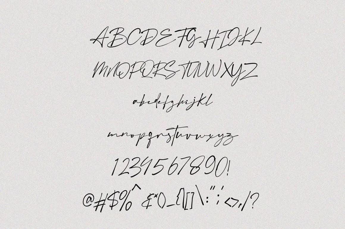 Austin Signature Elegant Font -3