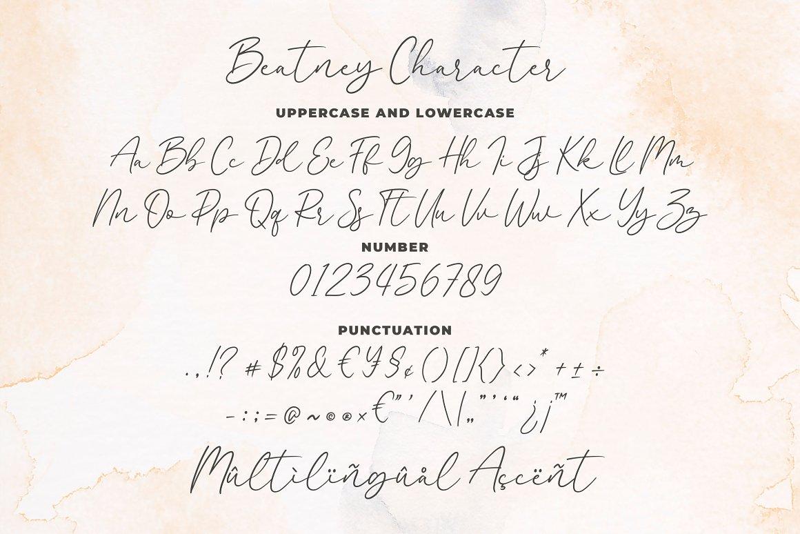 Beatney Signature Handwritten Font-3