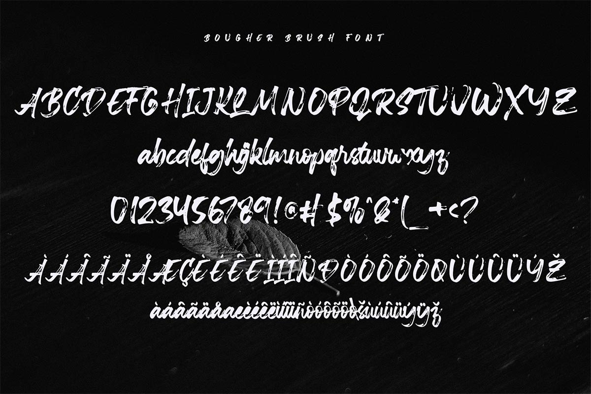 Bougher Script Brush Font-3