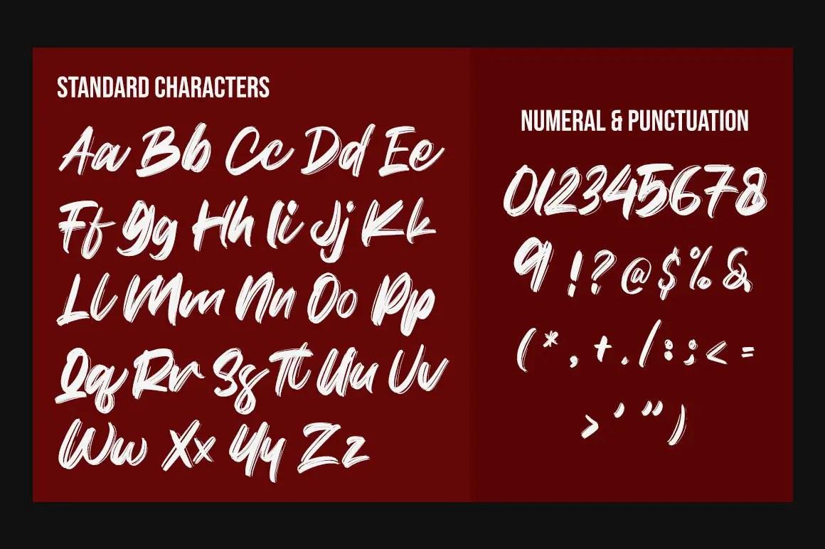 Citizen Brush Script Font-3