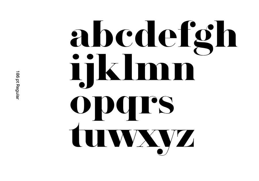 Herbert Serif Font-2