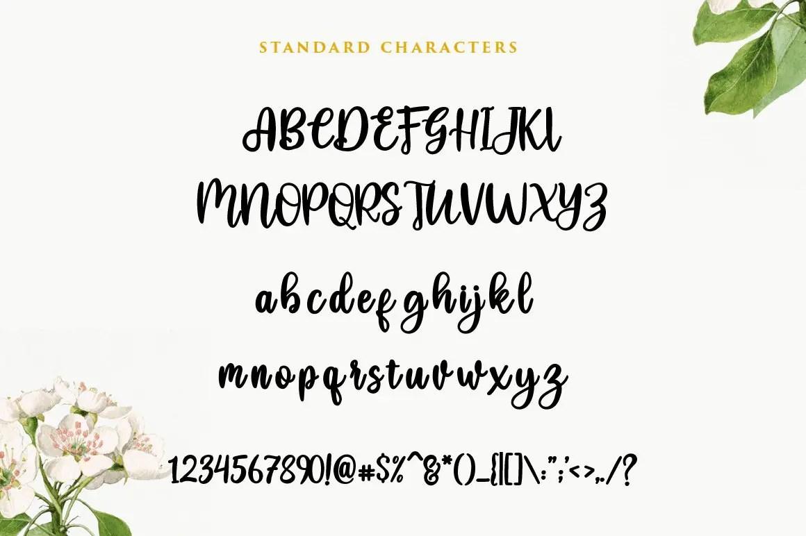 Heysweet ScriptCalligraphy Font-3