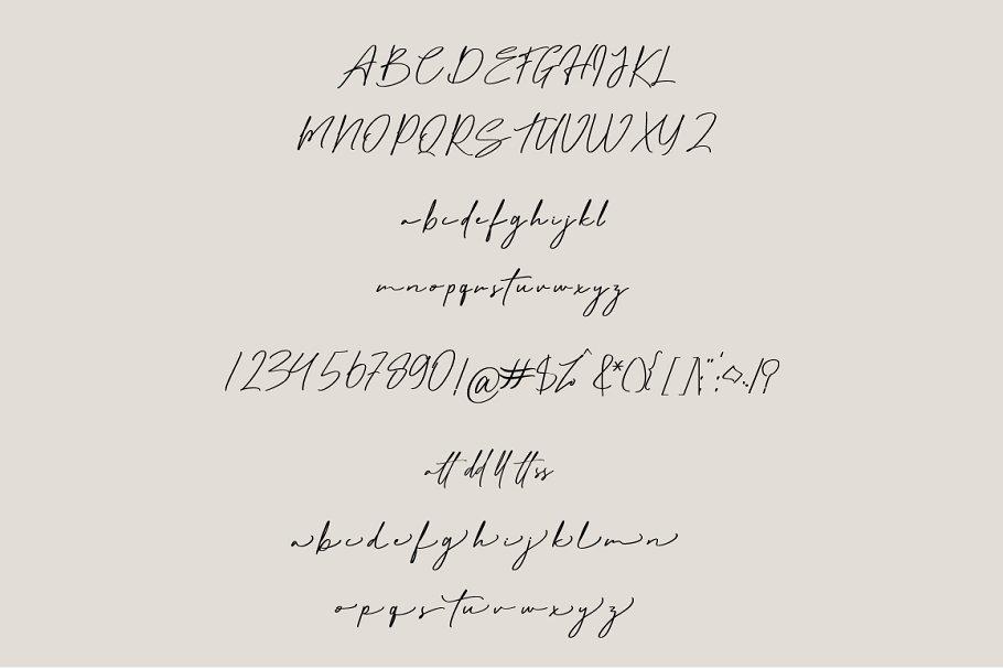 Matt Rostine Chic Signature Script Font-3