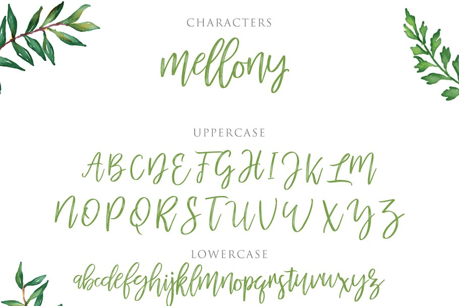 Mellony Brush Script Font-3