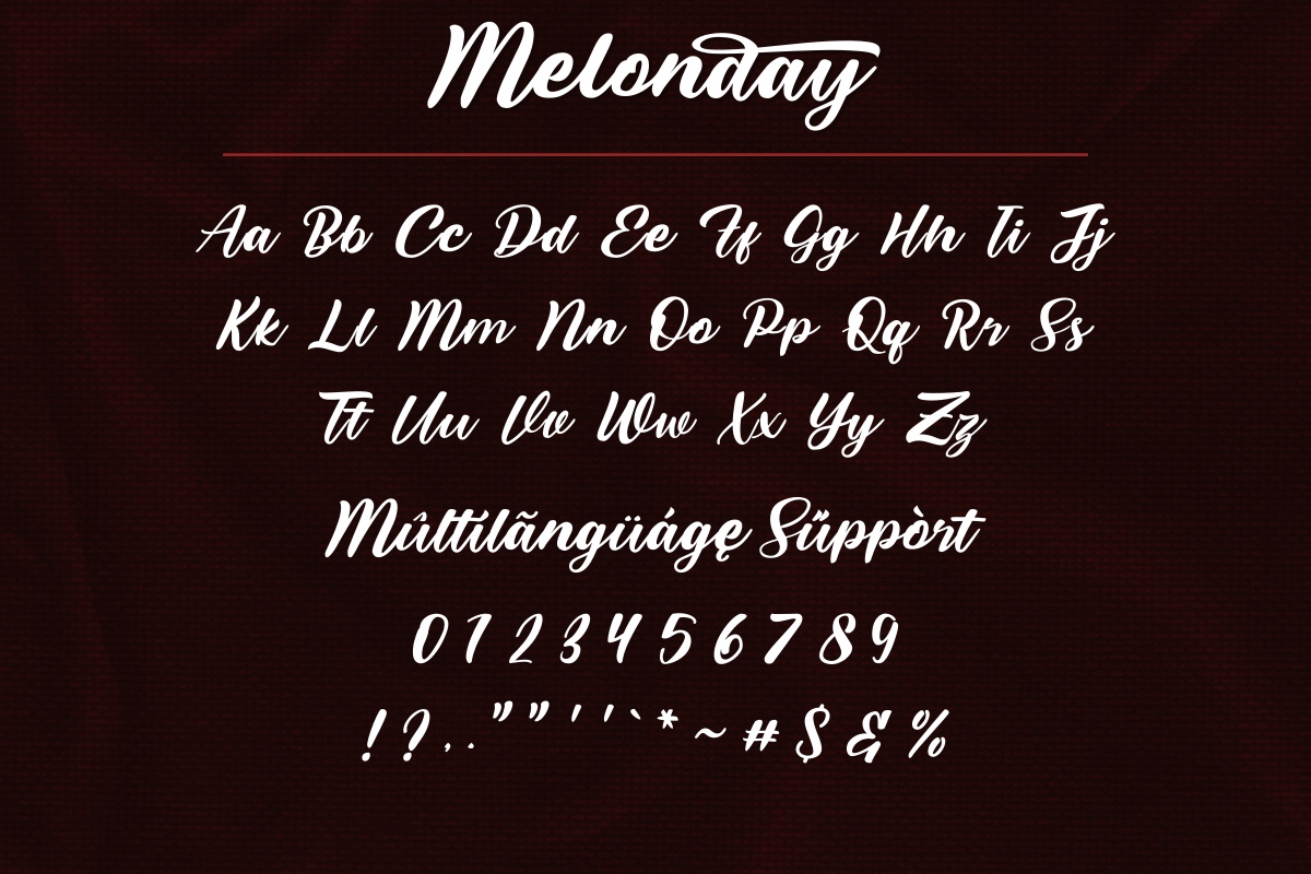 Melonday Script Calligraphy Font-3