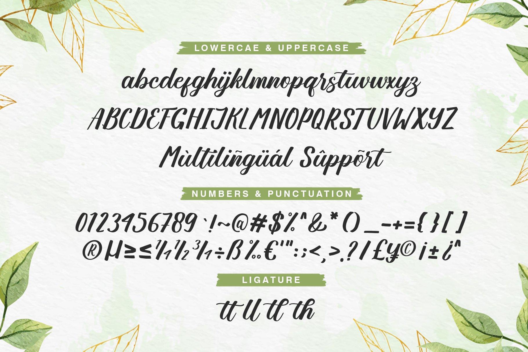 Angellya Modern Calligraphy Font -3