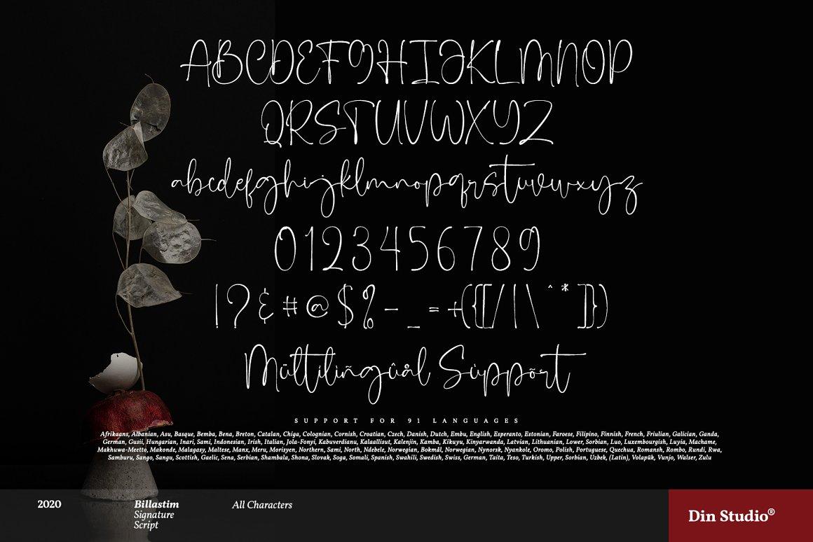 Billastim Signature Calligraphy Font -3