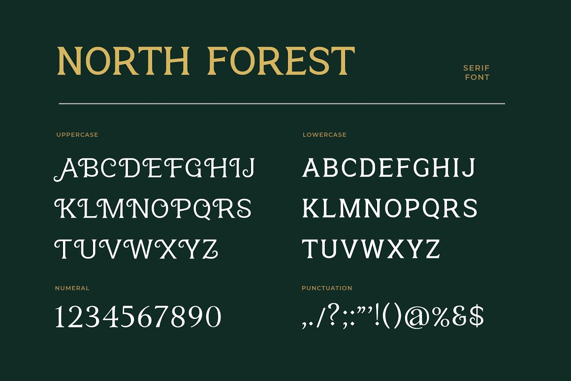 North Forest Serif Typeface -3