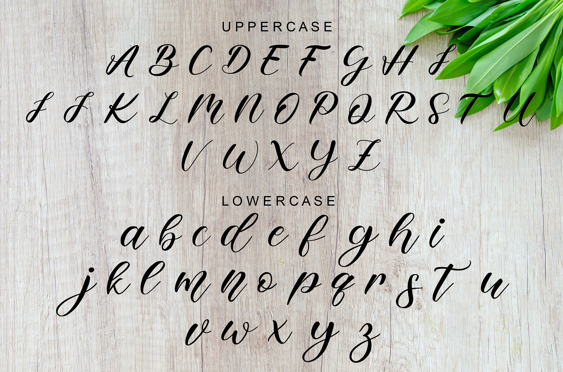 Pudding Calligraphy Font -2