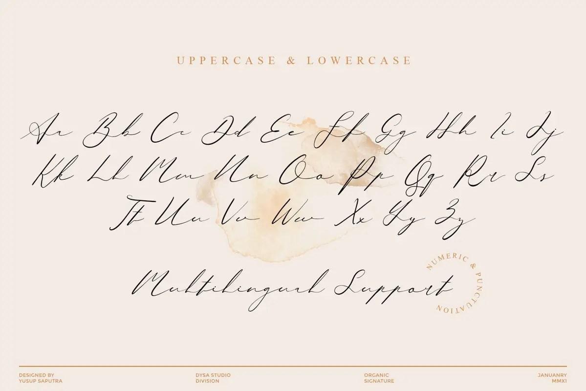 Quensialy Organic Signature Font -3