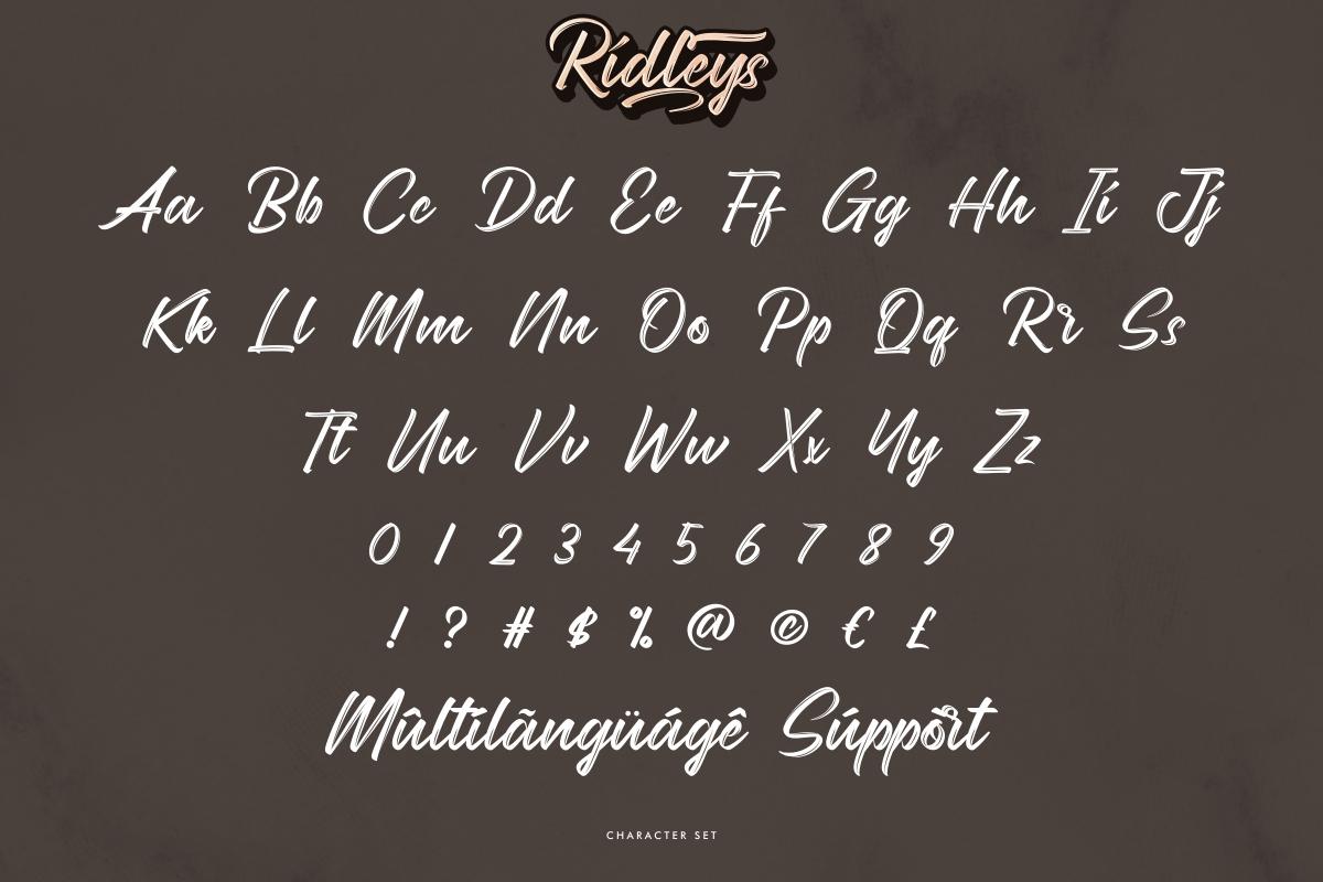 Ridleys brush Font -3