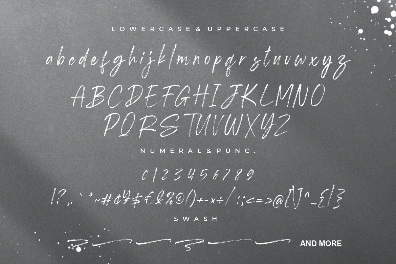 Shutterland Handbrush Script Font -3