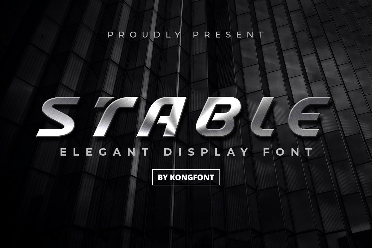 Stable Elegant Display Font -1