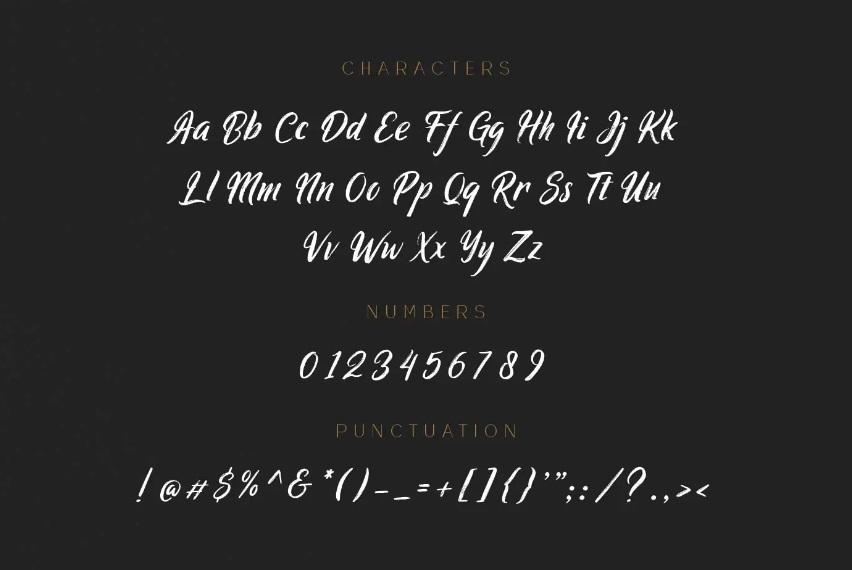 Ringtrack Strong Brush Script Font-3