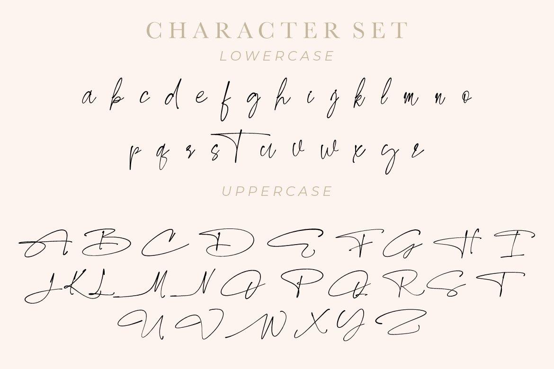Carlista Buttery Script Handwritten Font -3