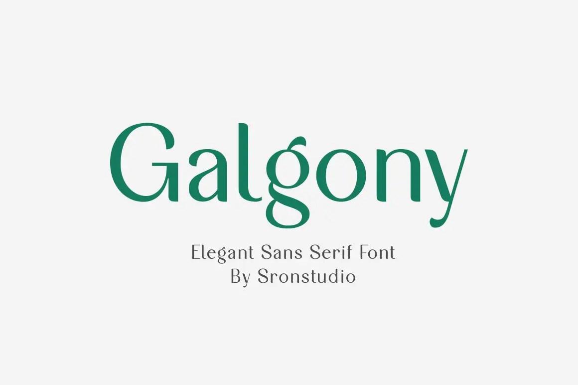 Galgony Elegant Sans Serif Font -1