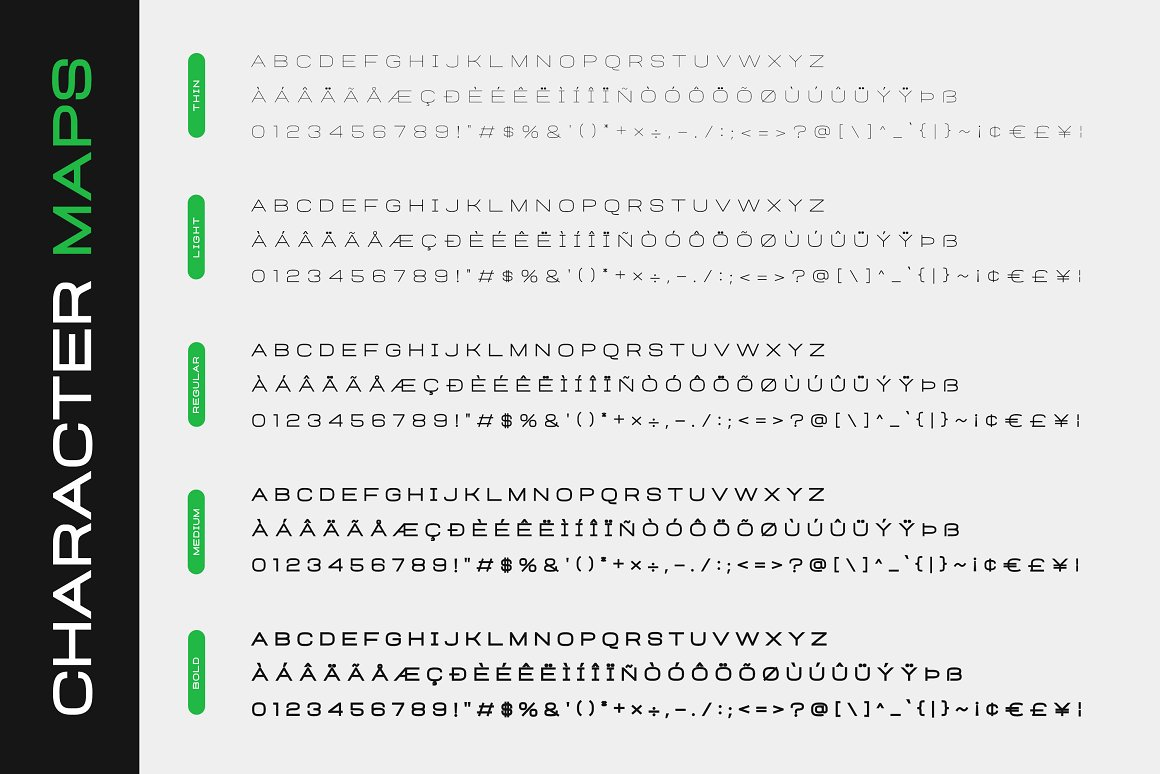 Heinch Expanded Sans Family Font -3