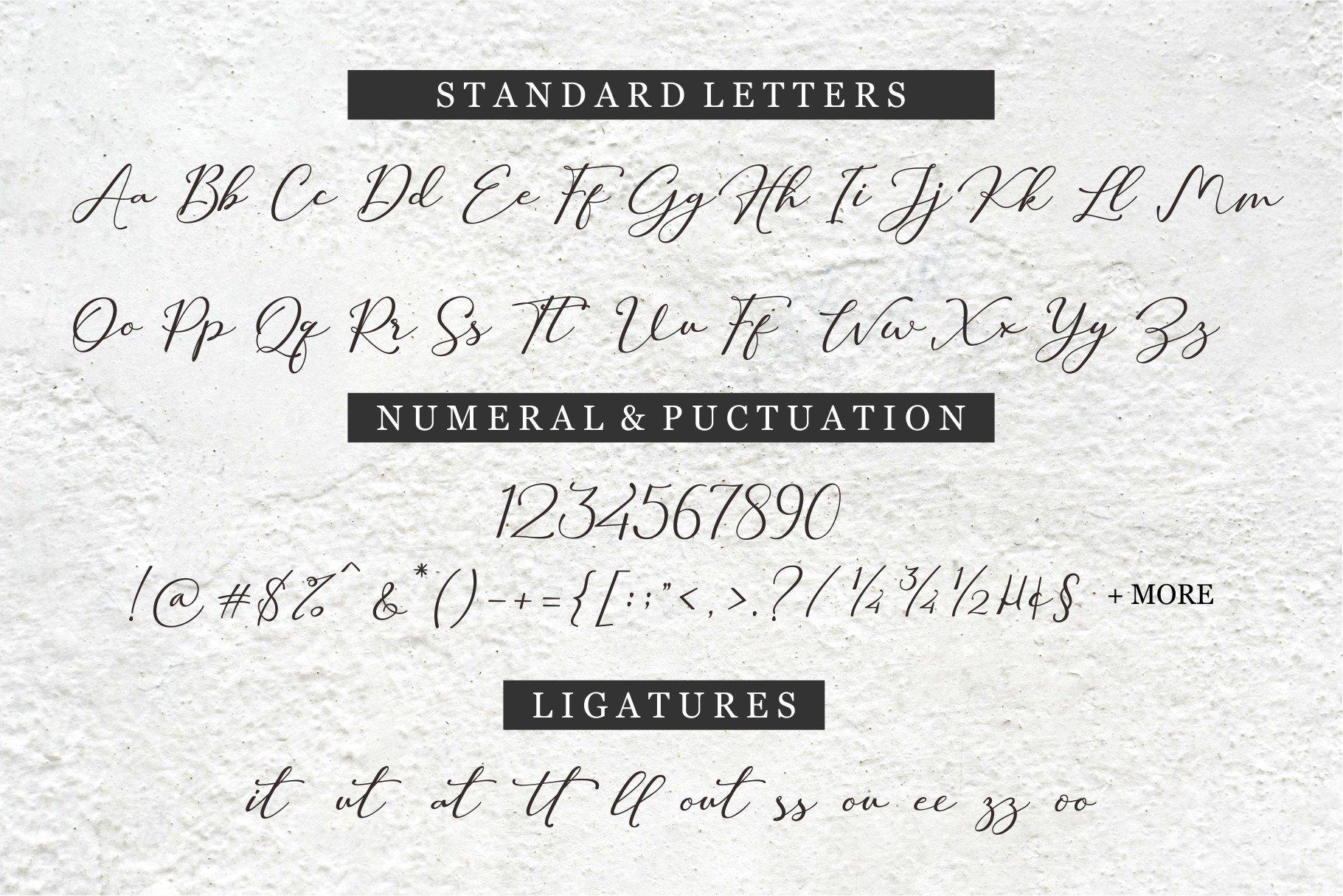 Hilland Authentic Signature Font -3