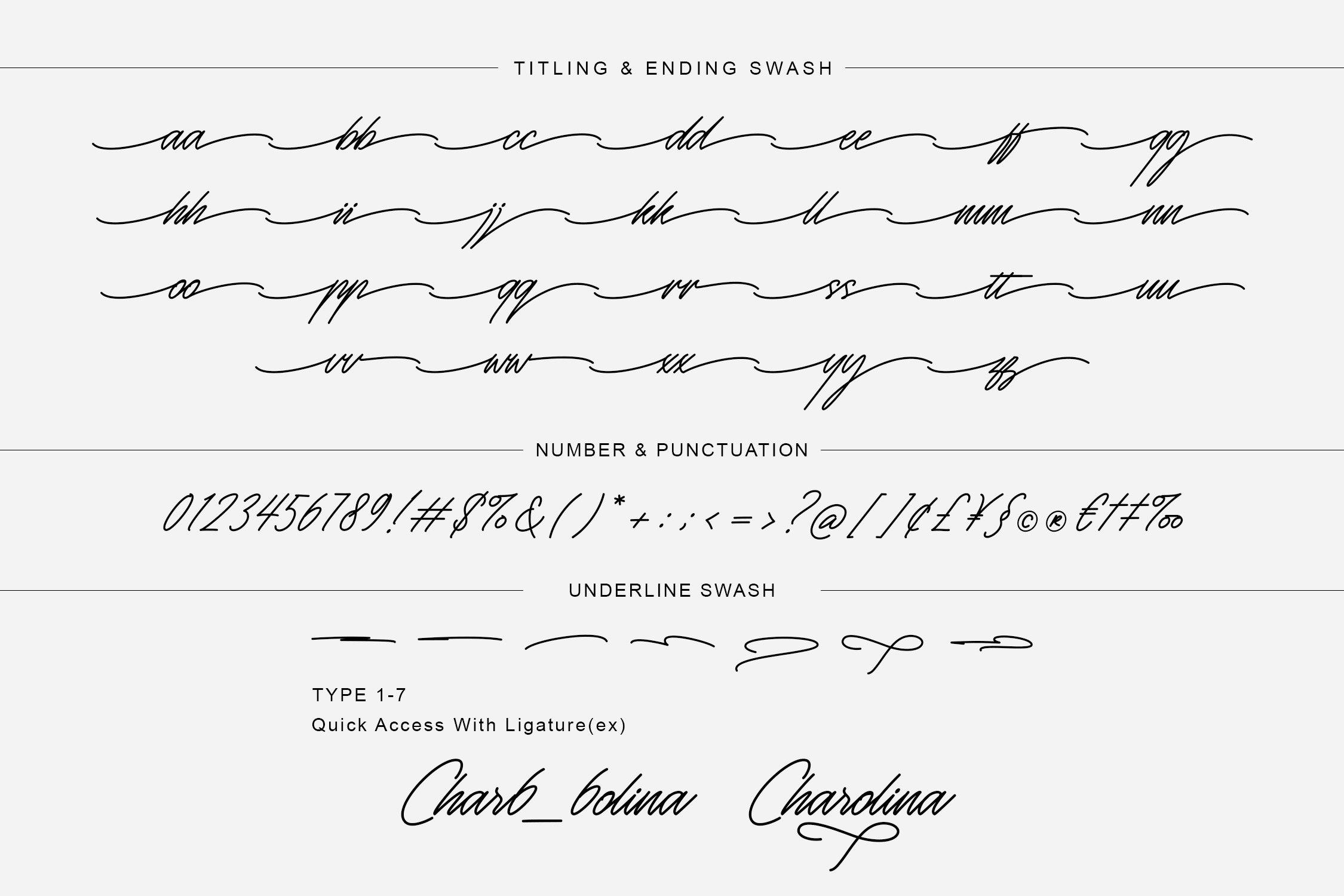 Monosign Beautiful Signature Font -3