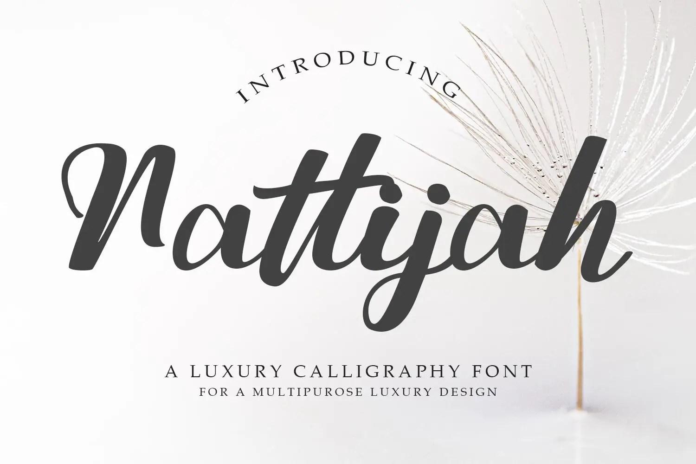 Nattijah Calligraphy Script Font -1
