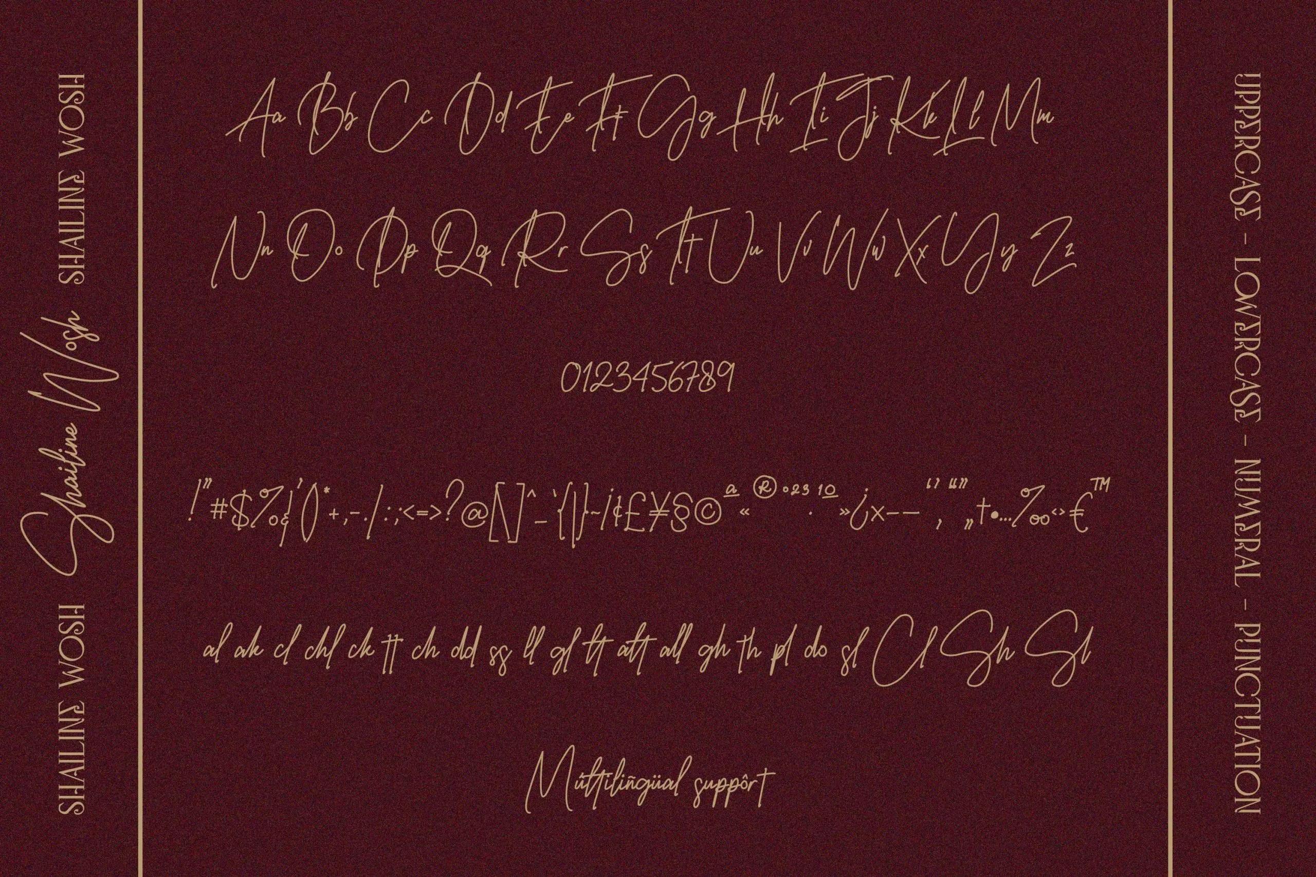 Shailine Wosh Modern Handwritten Font -3