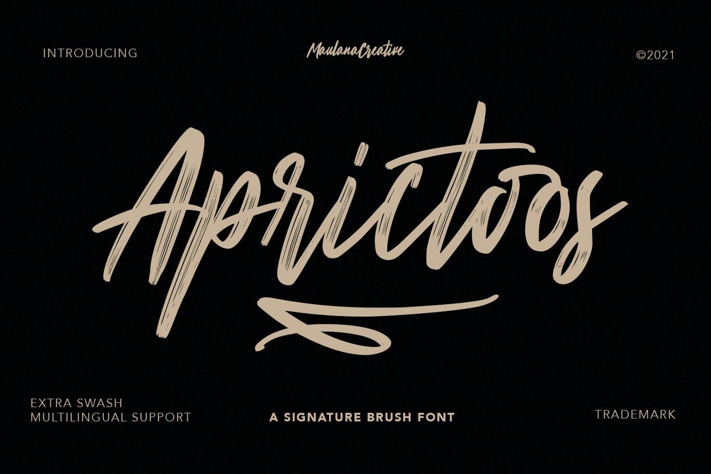 Aprictoos Signature Brush Font -1