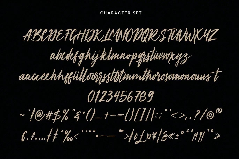 Aprictoos Signature Brush Font -3