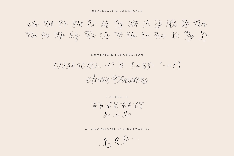 Avalien Calligraphy Script Font -3