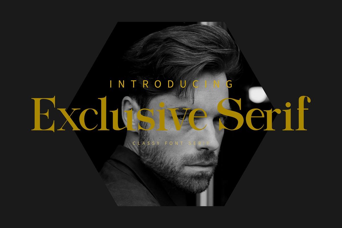 Exclusive Serif Font -1