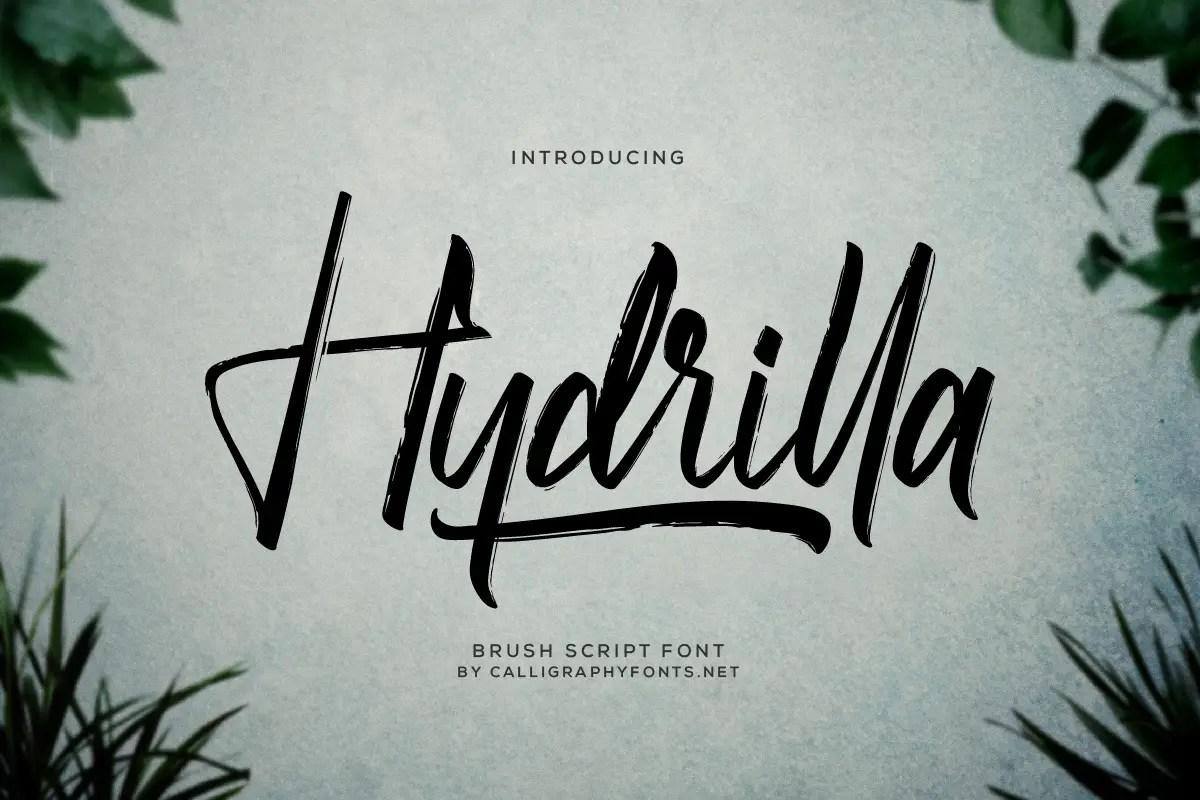 Hydrilla Textured Brush Font -1