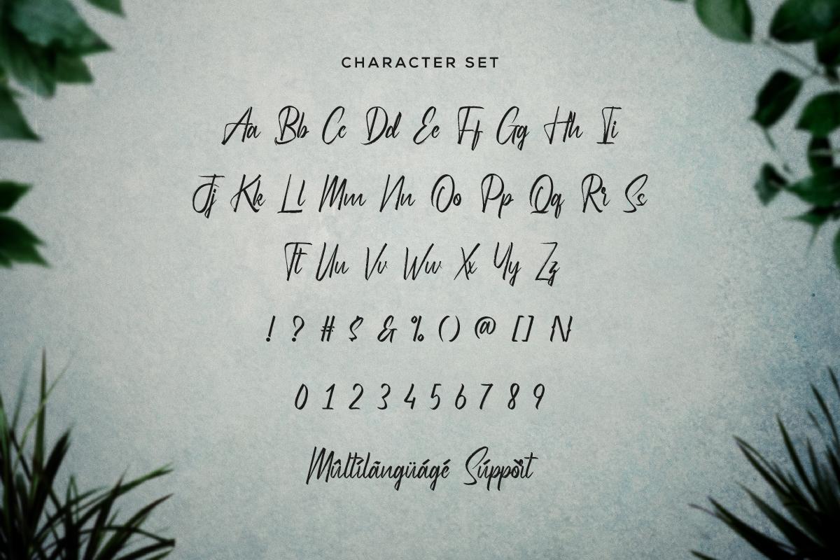 Hydrilla Txtured Brush Font -3