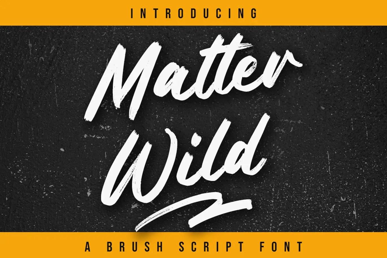 Matter Wild Script Brush Font -1