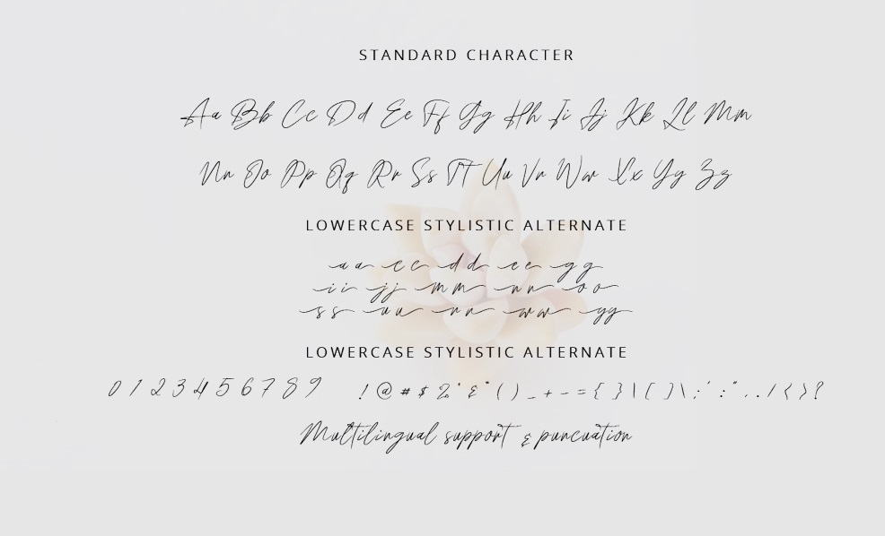 Anthonio Bradley Signature Handwritten Font -3