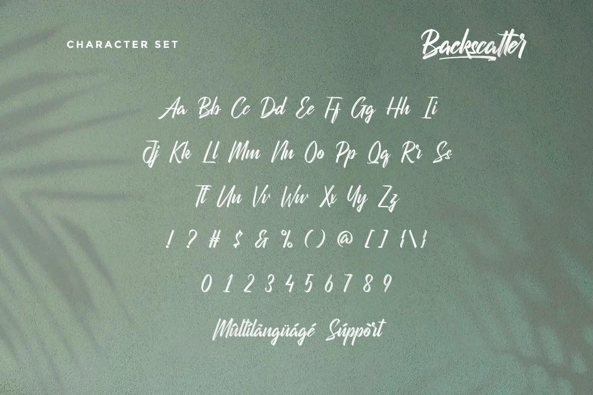 Backscatter Script Brush Font -3