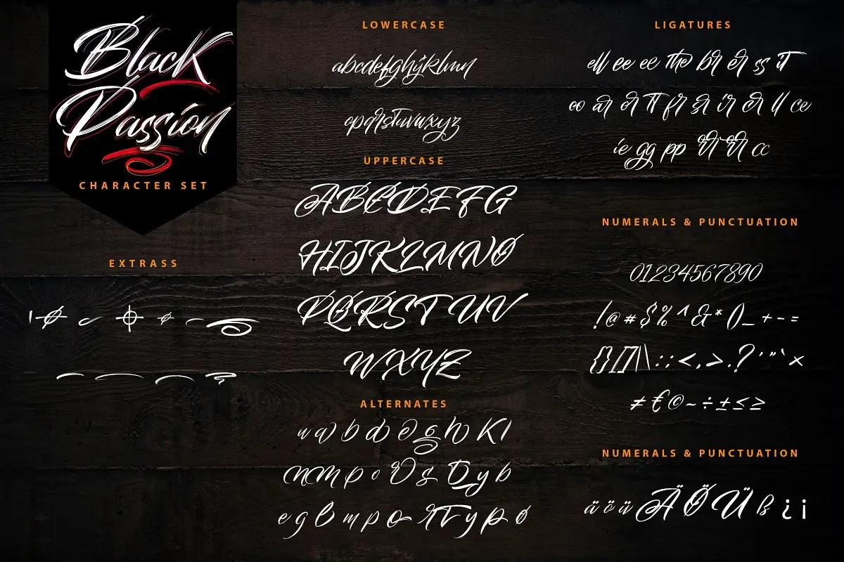 Black Passion Brush Script Font -3