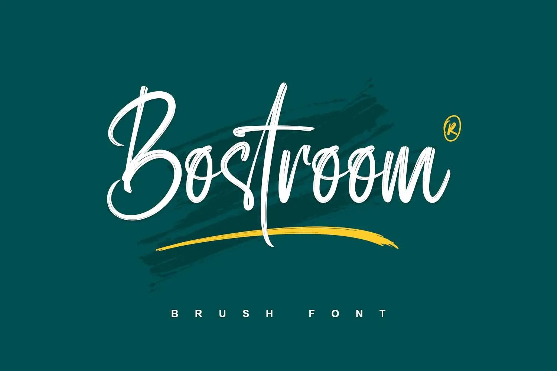 Bostroom Brush Script Font -1