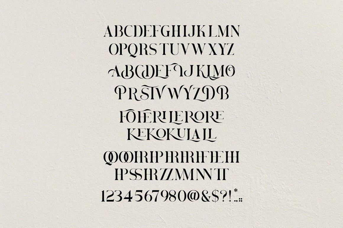 Brovile Classy Serif Font -3